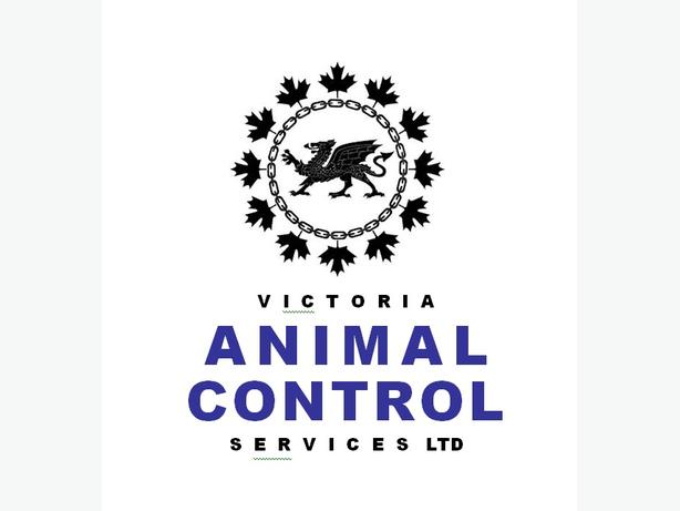 ANIMAL CONTROL OFFICER Victoria City, Victoria