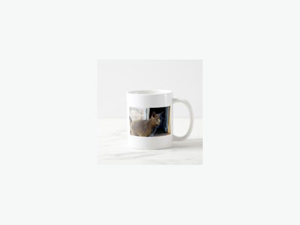Blue Cat Focus Coffee Mug