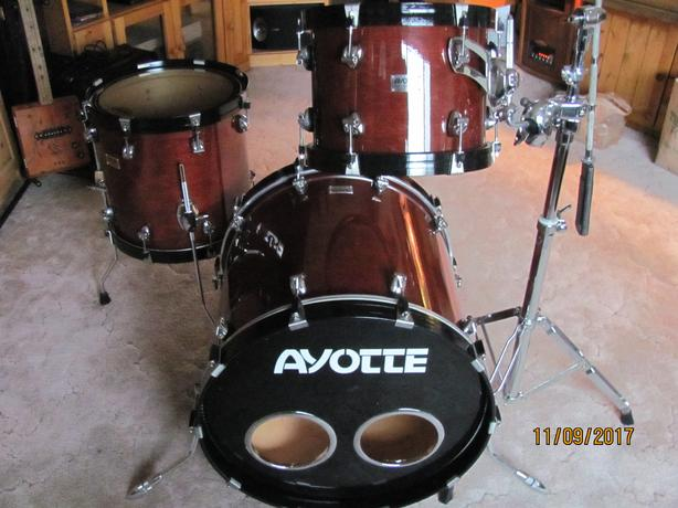 Ayotte maple drums