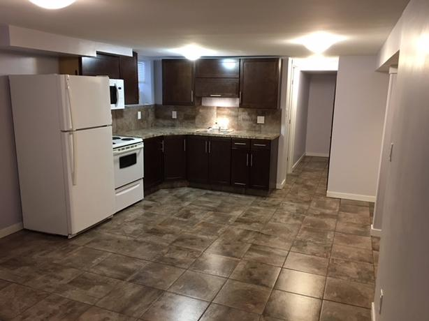 Large 1 bedroom basement suite with new kitchen, new bathroom - Nice!