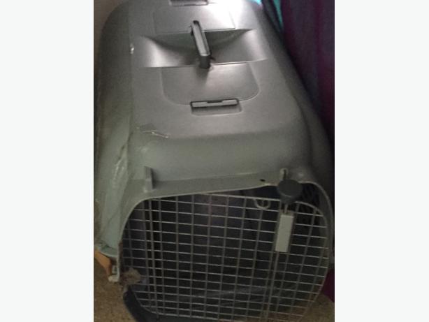 FREE: Dog Kennel