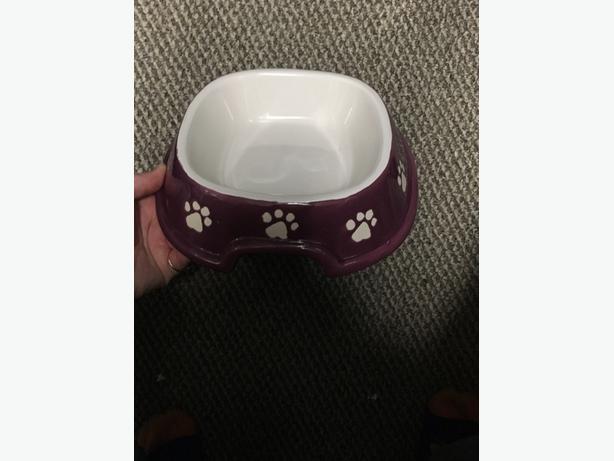 Ceramic pet food dish