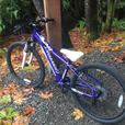 REDUCED BRAND NEW XTR JR Cannondale Trail Bike 24 Pro max