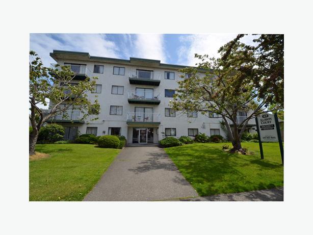 Top Floor, spacious Bachelor Suite in James Bay