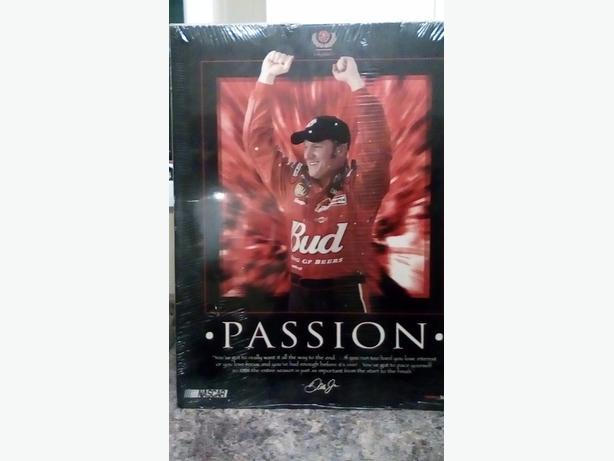 Dale Earnhardt Jr Posters