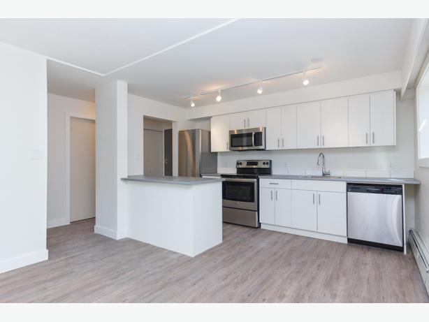 Spacious 1-Bed newly renovated apartment! $1,550 2626 Cook St