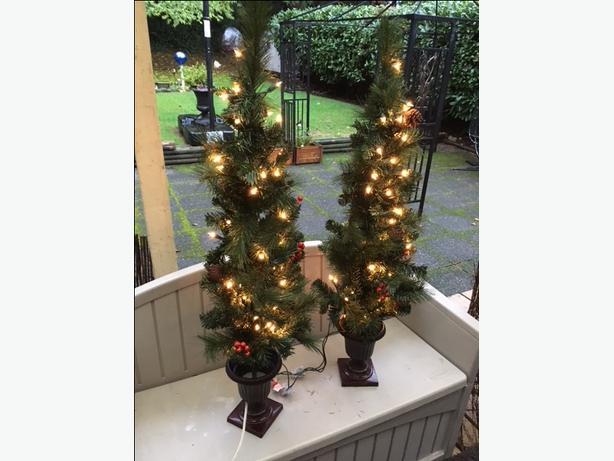 2 Entrance Trees