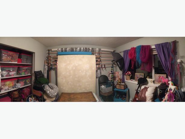Extensive Photo Studio & Backdrops