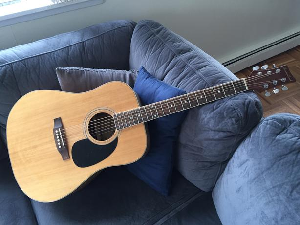 Beaver Creek Guitar BCTD105SM