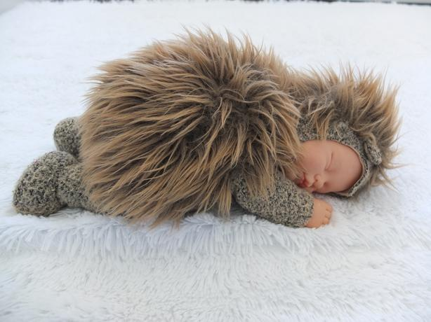 Anne Geddes Hedgehog Stuffed Animal Soft Toy Baby Doll Cute