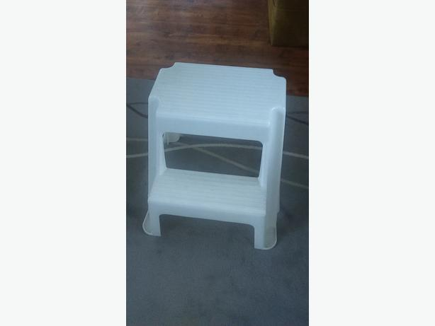 Fantastic Plastic Two Step Stool Very Clean Saanich Victoria Gamerscity Chair Design For Home Gamerscityorg