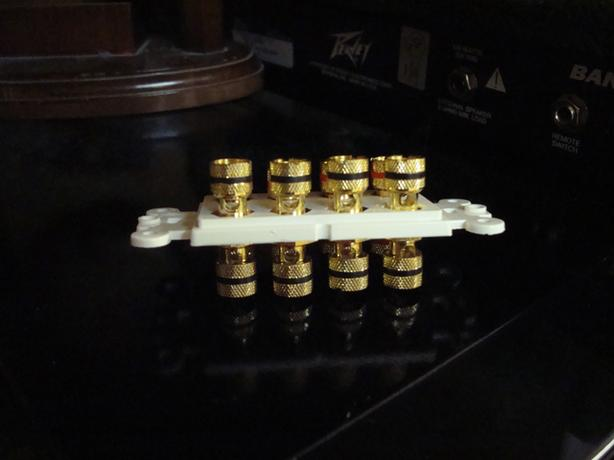 New Decora Insert with 8 Gold Plated Ports - $35
