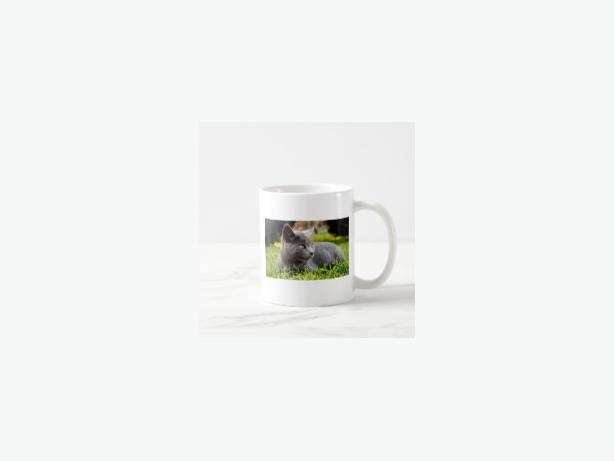Gift clothing and items, unique online store!