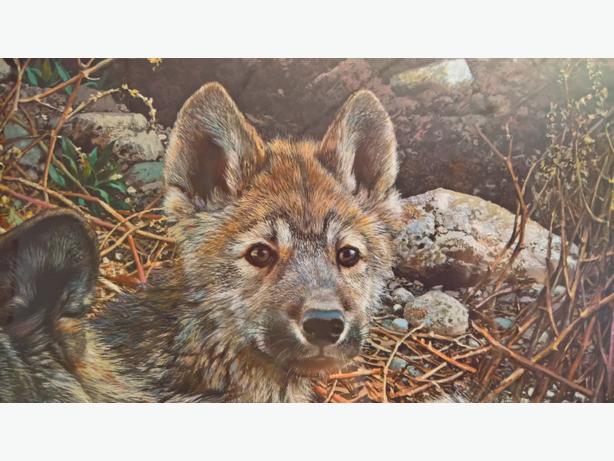 Carl Brenders: Den Mother - Wolf Family - $290