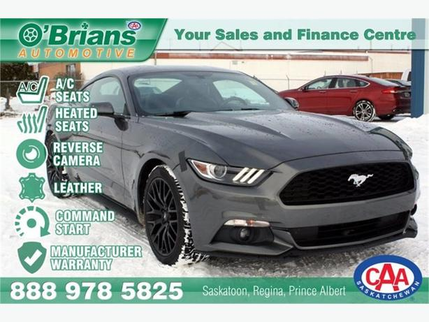 2017 Ford Mustang Fastback - EcoBoost w/Mfg Warranty, Leather