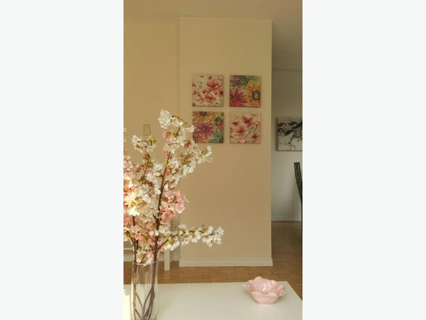 Private bed and bathroom for rent in 2br Apt, January 1 (James Bay)