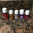 young living difuser and oils