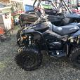 2017 CAN-AM RENEGADE 1000 PS