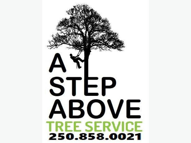 A Step Above Tree Service