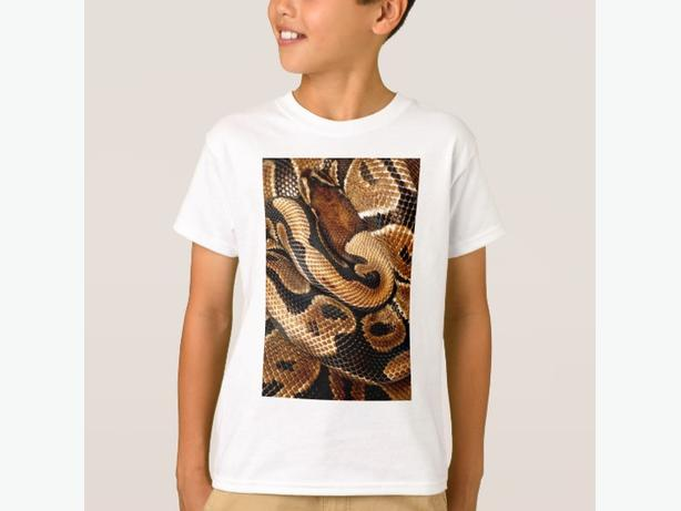 Ball Python is a work of Art T-Shirt