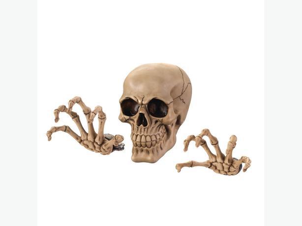 Skeleton Skull Figurine Wall Decor Toilet Paper Holder Candleholder 4PC Mix