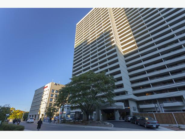 Available January In Toronto Huntley Apartments Cute 2 bedrooms