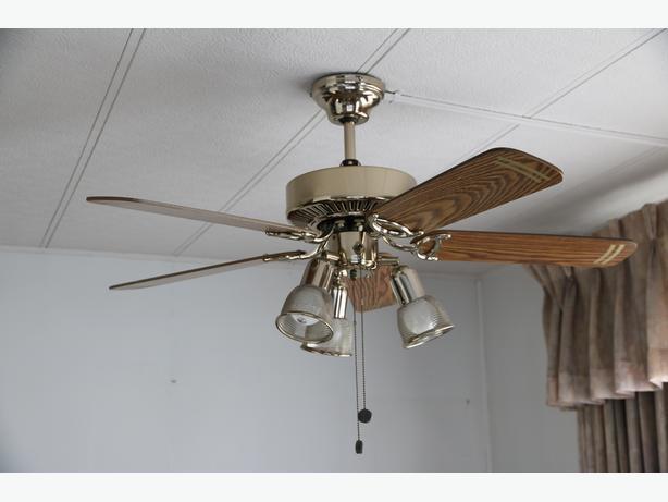 Beautiful Ceiling Fan - like new