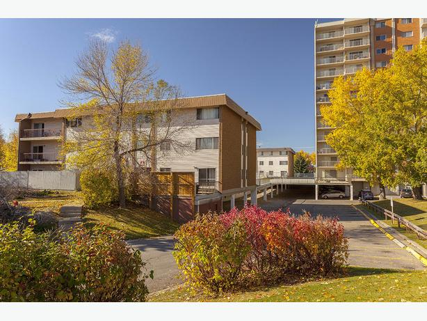 Available now In Calgary WOW 3 bedrooms Holly Acres Building