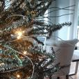 FREE: Artificial Christmas Tree and Garland
