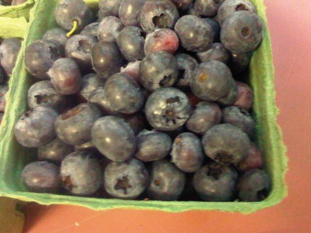 Organic Blueberries - Upick, We Pick, Fresh or Frozen