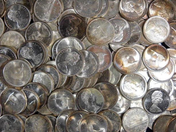 Parksville Coin Collector Paying Top Dollar for Silver Coins
