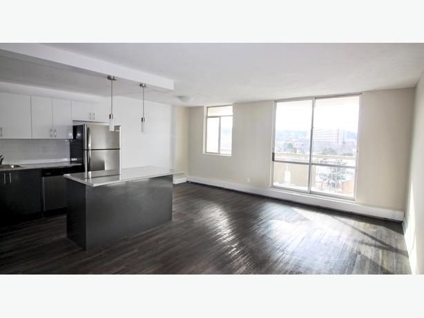 MUST GO TODAY Open Concept Unit for Rent
