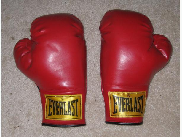Everlast Fitness Boxing Gloves