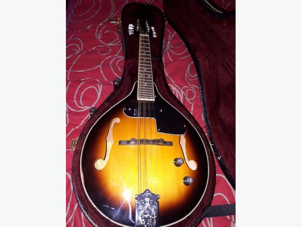 New fender mandolin FM-52e Victoria City, Victoria