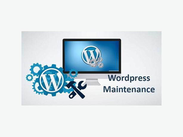 Wordpress Maintenance - Hourly Rates
