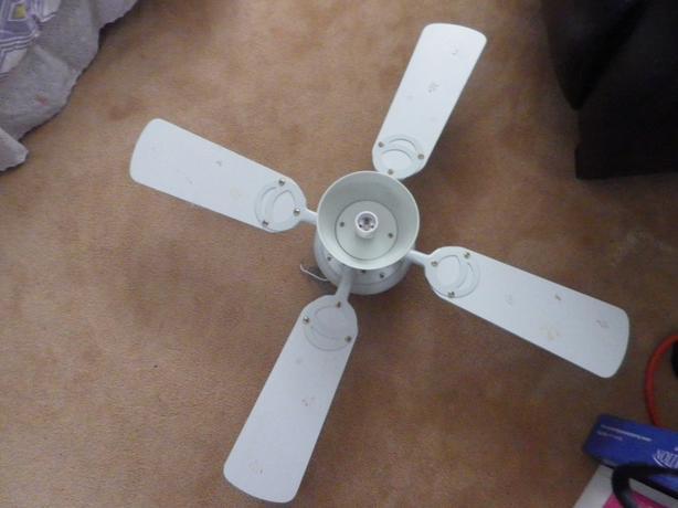 Large ceiling fan light