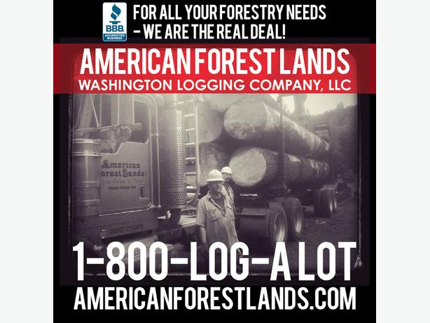LOGGING Land Timber Trees$$ Olympia, Eatonville, Port Orchard, Chehalis WA