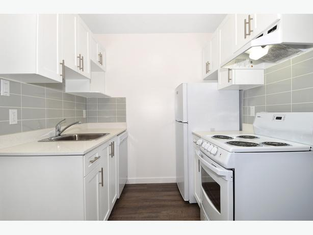 Modern Bachelor Studio in Kits! Steps to Kits Beach & West 4th!
