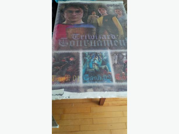 Harry Potter laminated poster