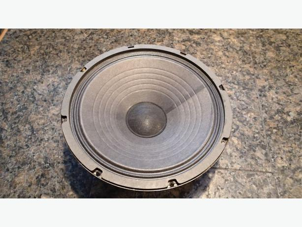 "Two 10"" THD guitar speakers"