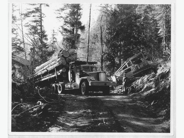 Experienced Logging Truck Driver