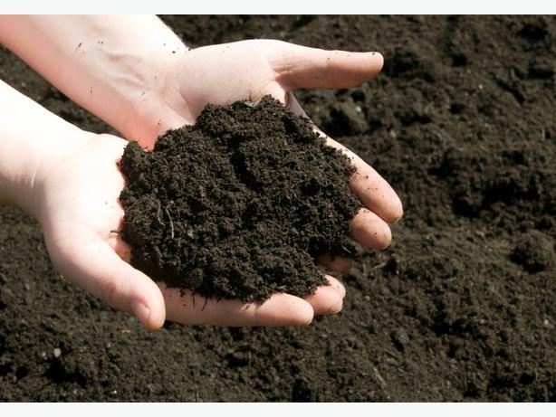 Rich dark organic soil for sale 1 cubic yard approx for Organic soil for sale