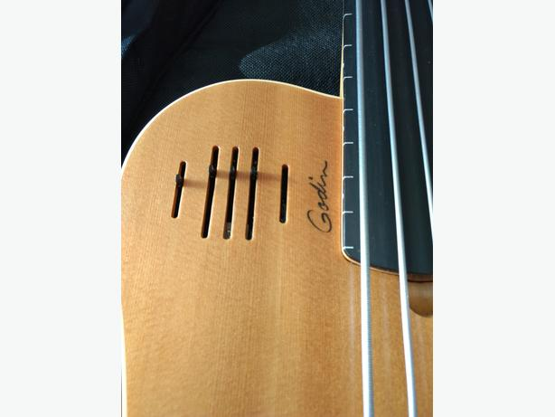 Godin A5 Fretless Bass Guitar, Acoustic Electric