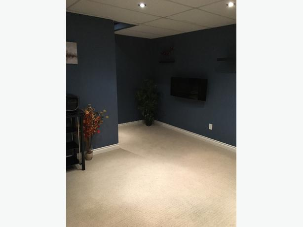 Basement available for Rent March1