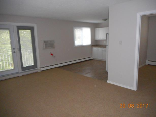 Updated Large 1 Bedroom - $950