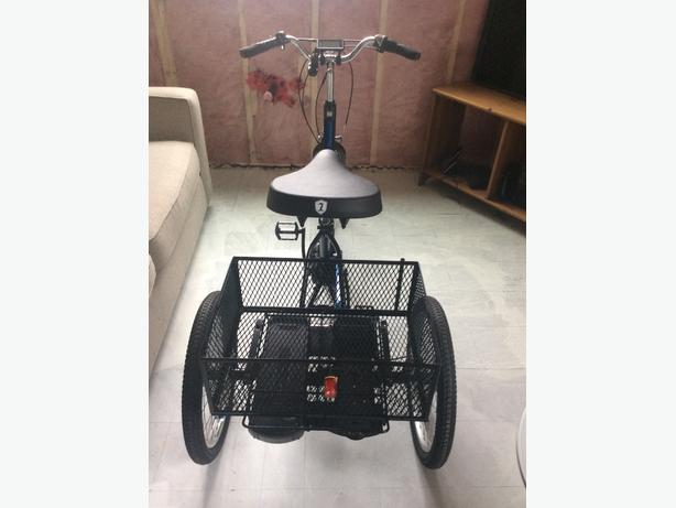 Raleigh 3 wheel electric bike