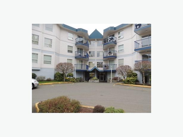 1 bedroom apartment suite available Feb 15th