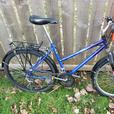 Blue Women's Mountain Bike