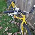 Yellow Mountain Bike