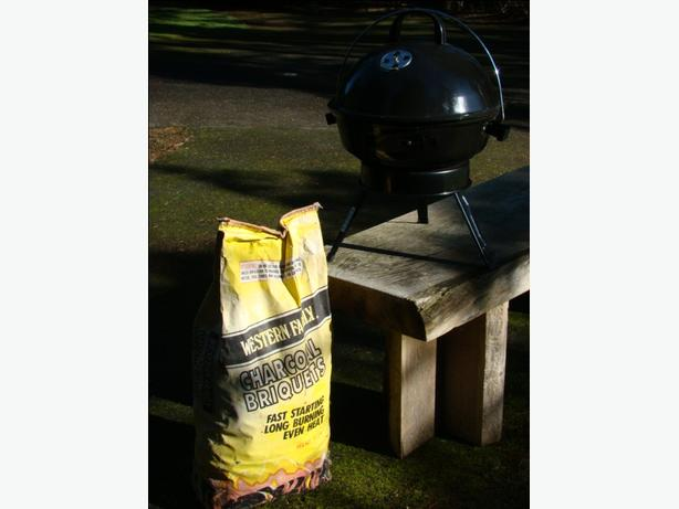 Portable Briquet BBQ with Charcoal